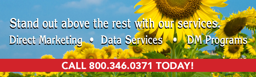 You'll stand out above the rest with our services.. Now offering: direct marketing, data services, and D.M. programs